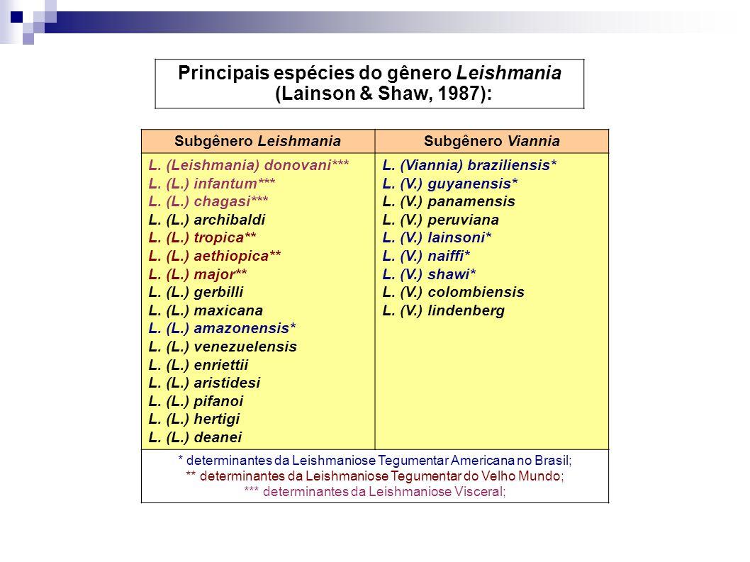 Principais espécies do gênero Leishmania (Lainson & Shaw, 1987):