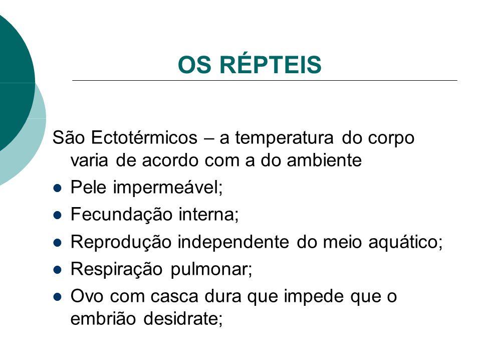 OS RÉPTEIS São Ectotérmicos – a temperatura do corpo varia de acordo com a do ambiente. Pele impermeável;