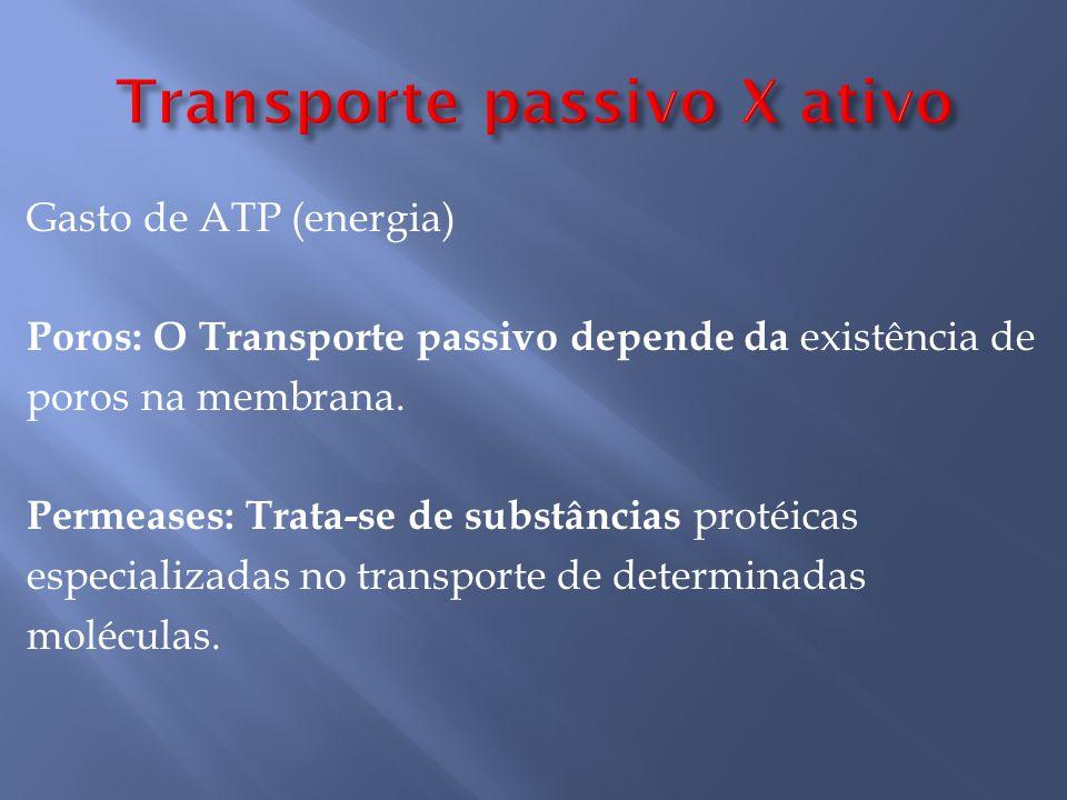 Transporte passivo X ativo