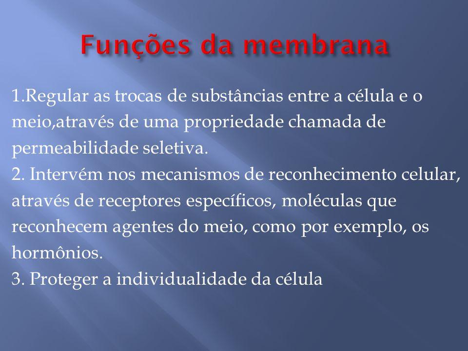 Funções da membrana