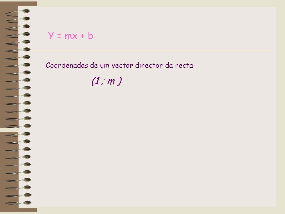 Y = mx + b Coordenadas de um vector director da recta (1 ; m )