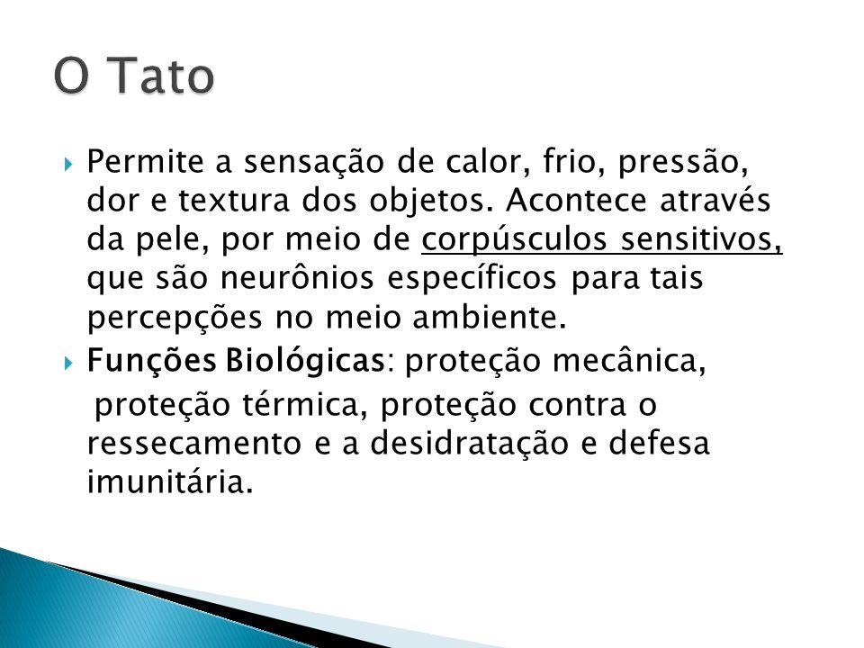 O Tato