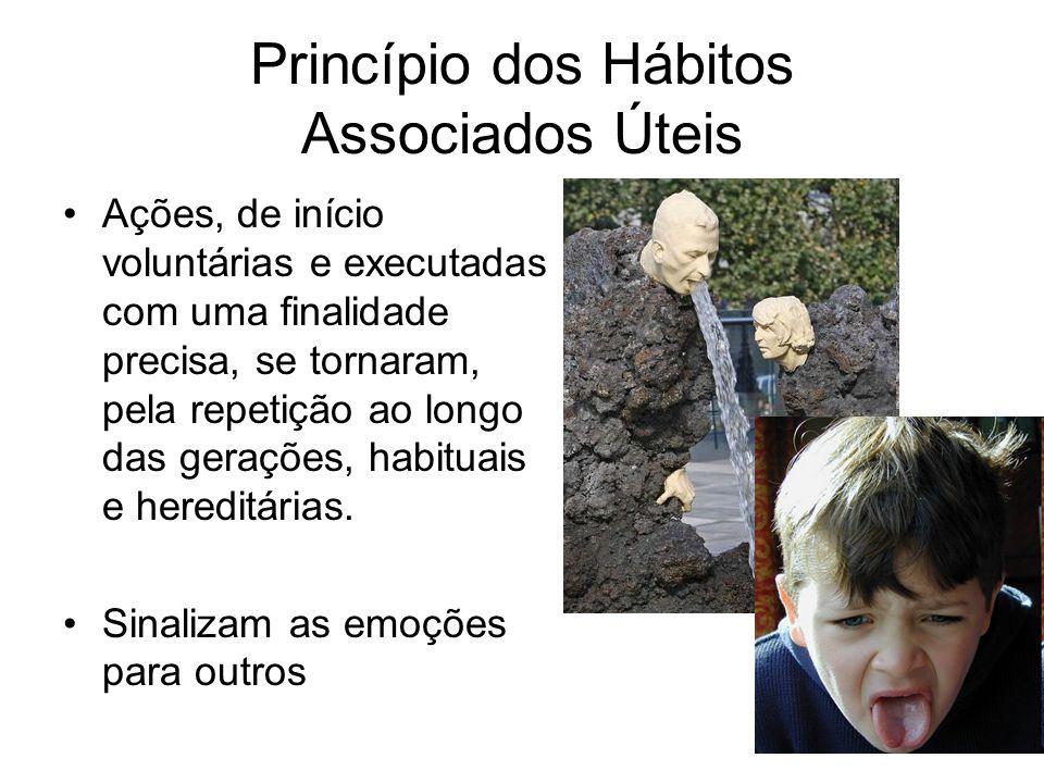 Princípio dos Hábitos Associados Úteis