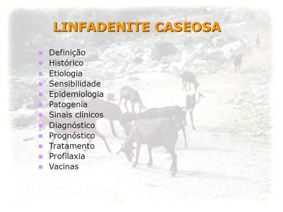 LINFADENITE CASEOSA Definição Histórico Etiologia Sensibilidade