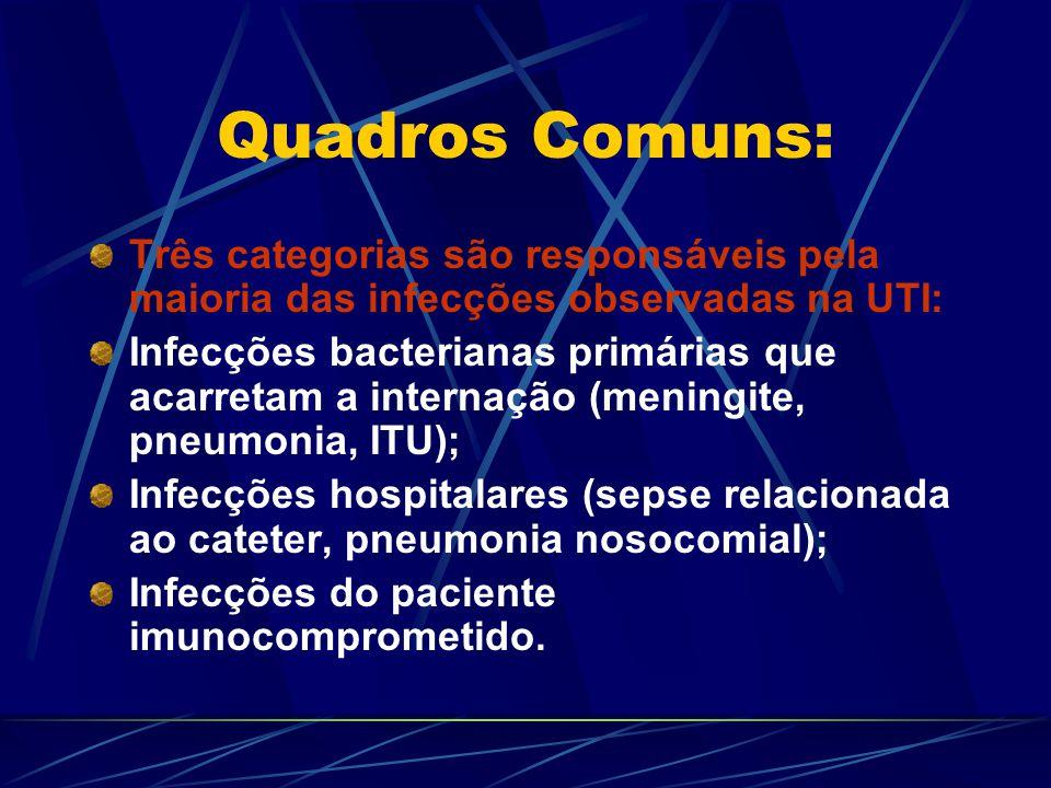 Quadros Comuns: Três categorias são responsáveis pela maioria das infecções observadas na UTI: