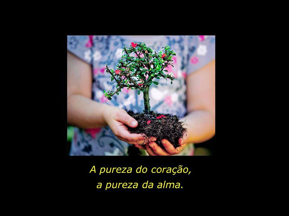 A pureza do coração, a pureza da alma.
