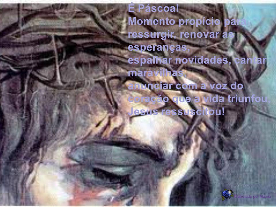 É Páscoa! Momento propício para ressurgir, renovar as esperanças, espalhar novidades, cantar maravilhas, anunciar com a voz do coração que a vida triunfou, Jesus ressuscitou!