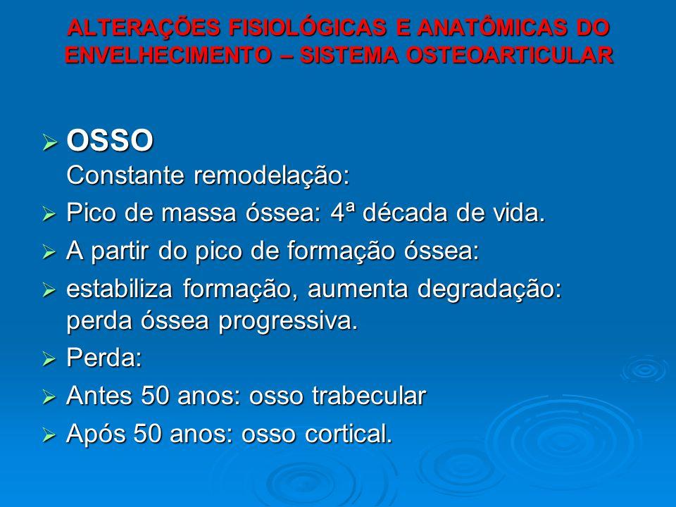 OSSO Constante remodelação: