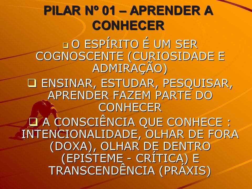 PILAR Nº 01 – APRENDER A CONHECER