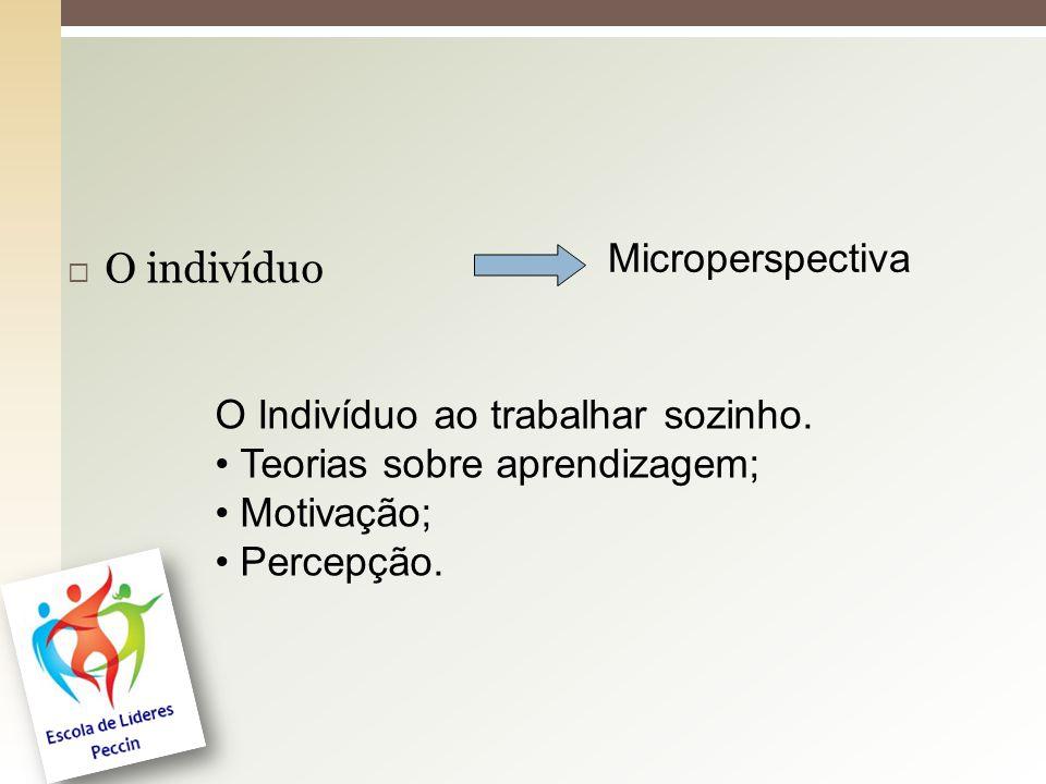O indivíduo Microperspectiva O Indivíduo ao trabalhar sozinho.