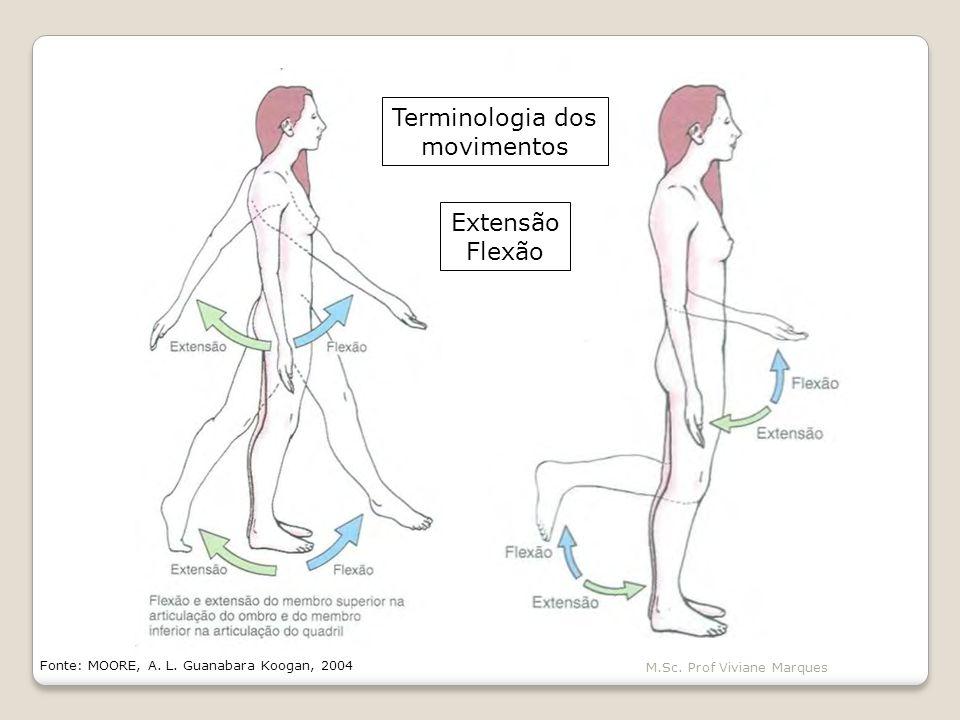 Terminologia dos movimentos Extensão Flexão M.Sc. Prof Viviane Marques