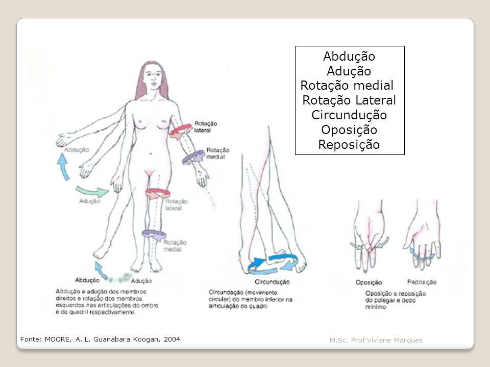 Abdução Adução Rotação medial Rotação Lateral Circundução Oposição