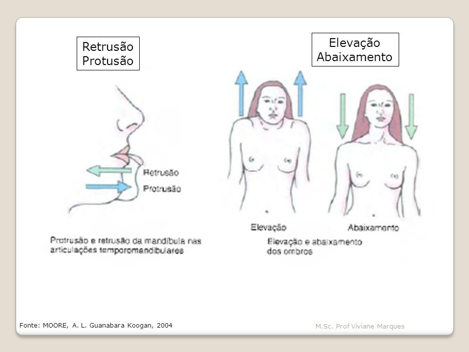 Elevação Retrusão Abaixamento Protusão M.Sc. Prof Viviane Marques