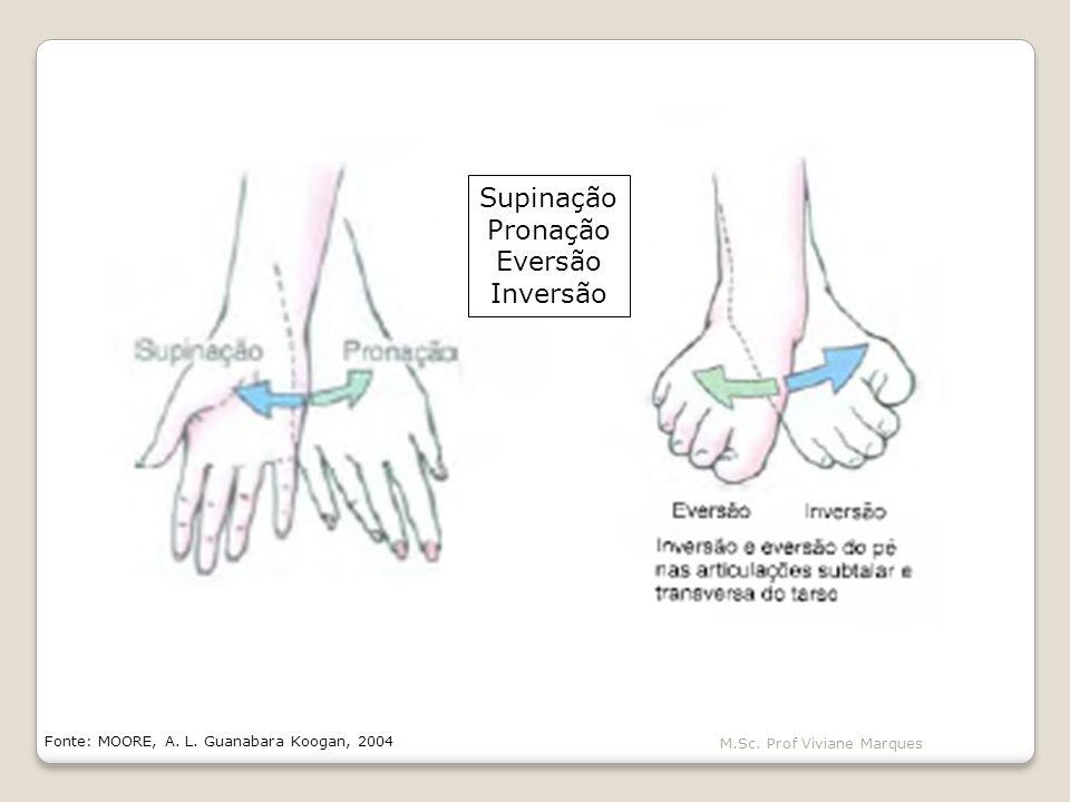 Supinação Pronação Eversão Inversão M.Sc. Prof Viviane Marques