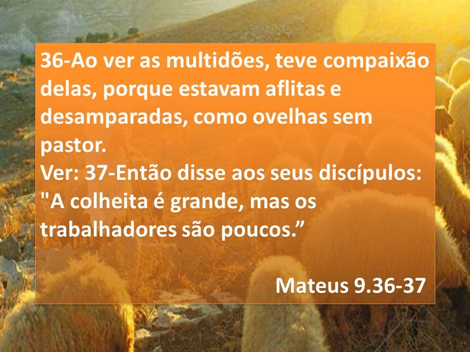 36-Ao ver as multidões, teve compaixão delas, porque estavam aflitas e desamparadas, como ovelhas sem pastor.