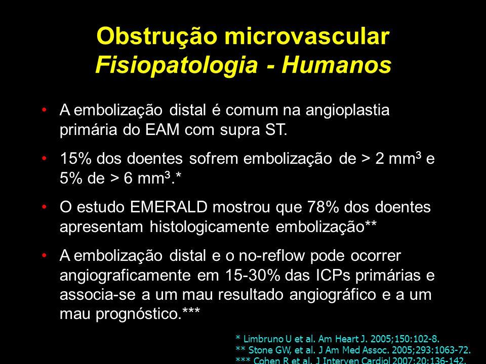Obstrução microvascular Fisiopatologia - Humanos