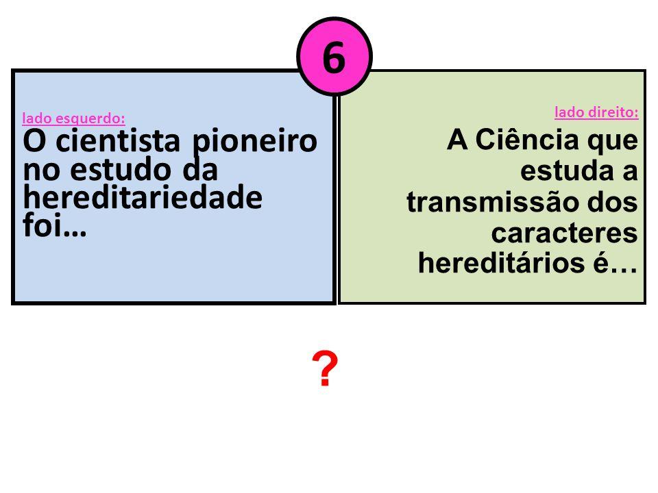 lado esquerdo: O cientista pioneiro no estudo da hereditariedade foi…