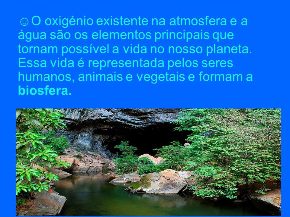 O oxigénio existente na atmosfera e a água são os elementos principais que tornam possível a vida no nosso planeta.