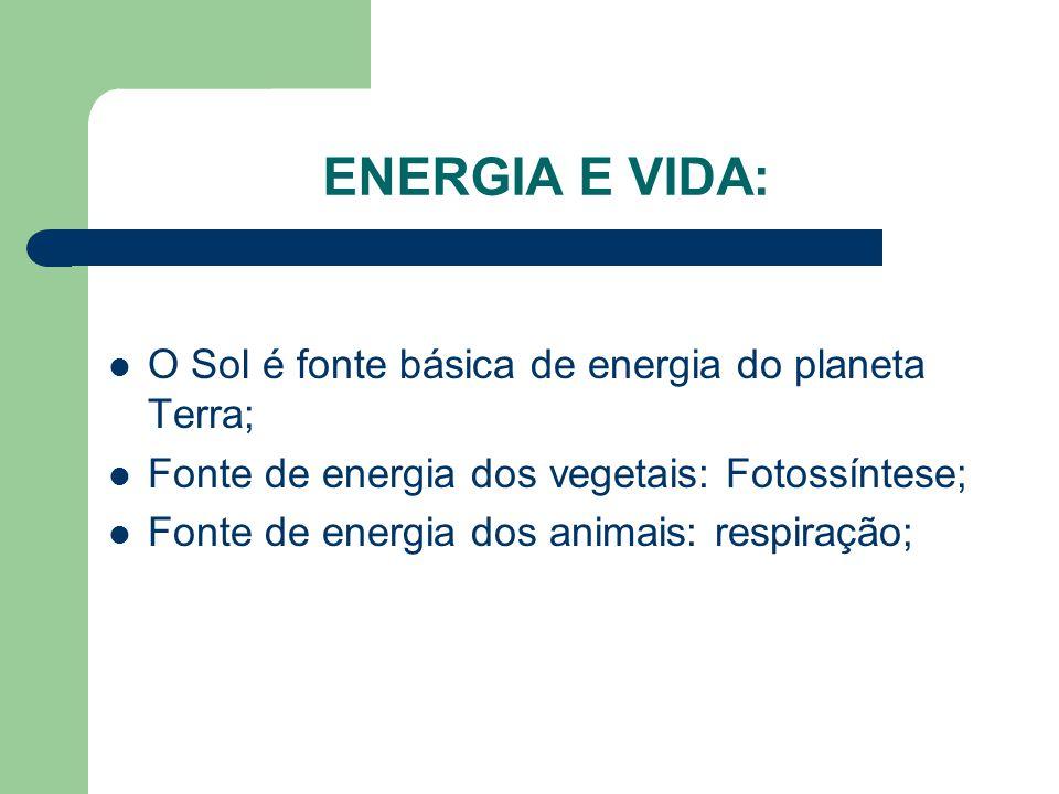 ENERGIA E VIDA: O Sol é fonte básica de energia do planeta Terra;