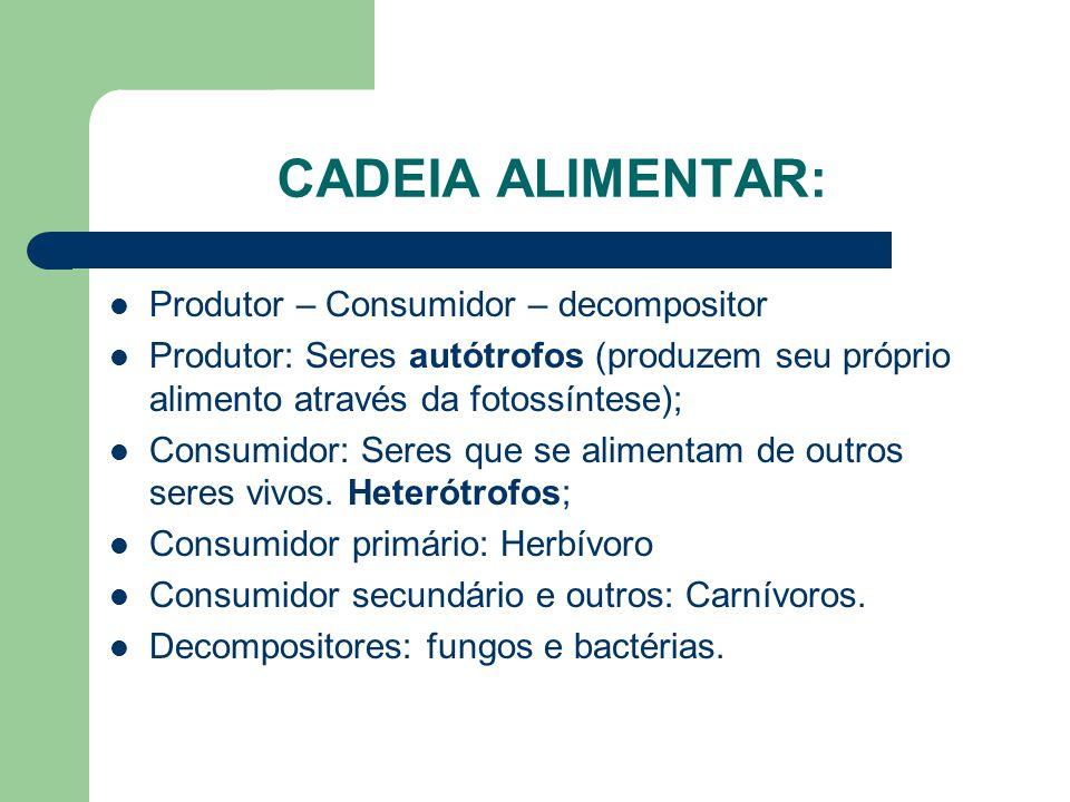 CADEIA ALIMENTAR: Produtor – Consumidor – decompositor