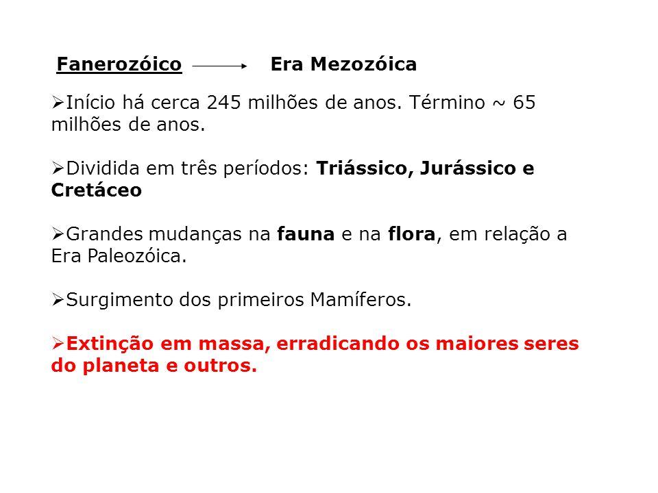 Fanerozóico Era Mezozóica. Início há cerca 245 milhões de anos. Término ~ 65 milhões de anos.