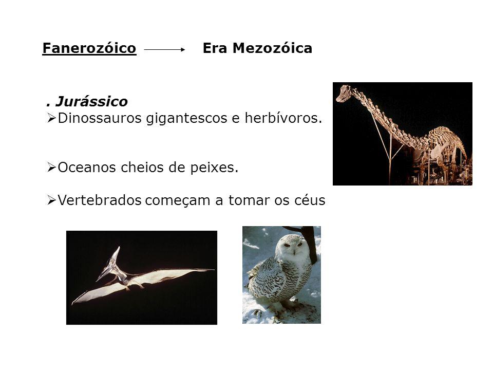 Fanerozóico Era Mezozóica. . Jurássico. Dinossauros gigantescos e herbívoros. Oceanos cheios de peixes.