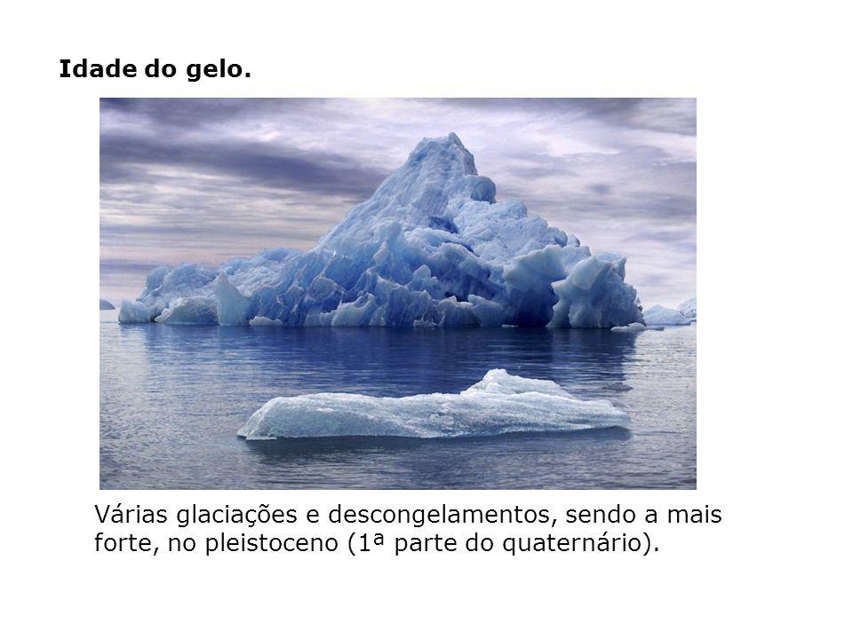 Idade do gelo.