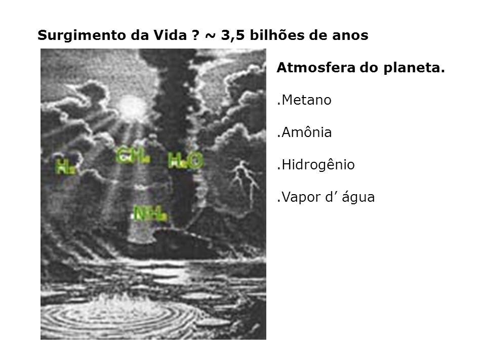 Surgimento da Vida ~ 3,5 bilhões de anos