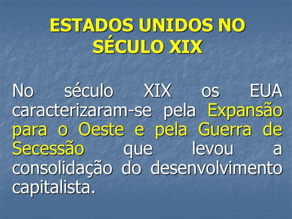ESTADOS UNIDOS NO SÉCULO XIX