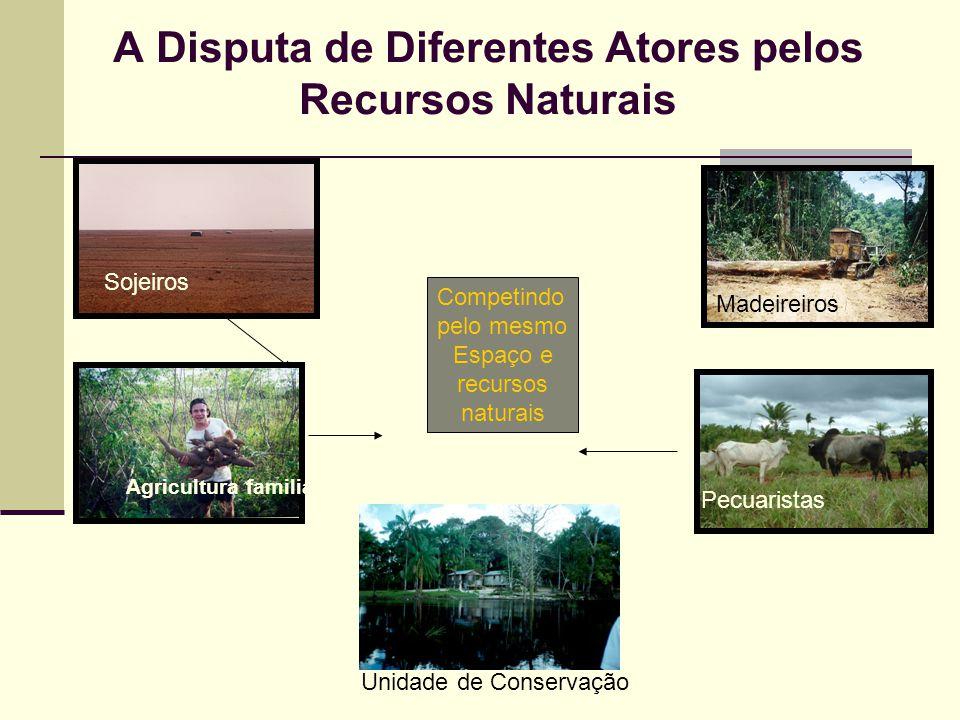 A Disputa de Diferentes Atores pelos Recursos Naturais