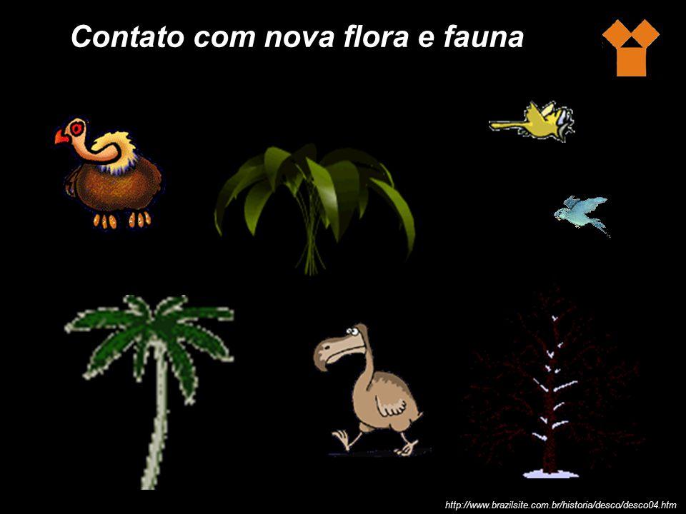 Contato com nova flora e fauna