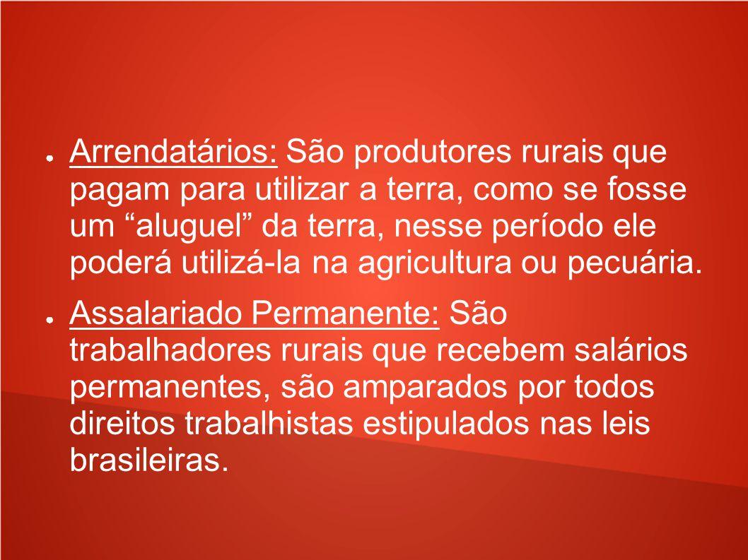 Arrendatários: São produtores rurais que pagam para utilizar a terra, como se fosse um aluguel da terra, nesse período ele poderá utilizá-la na agricultura ou pecuária.