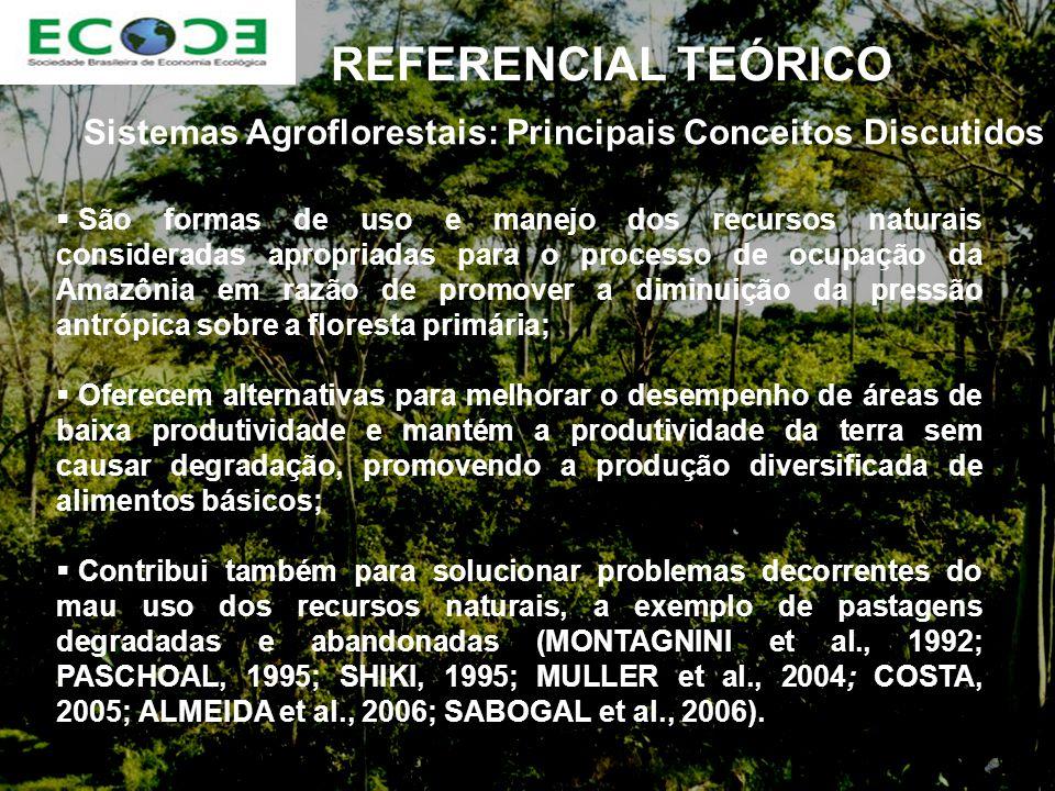 Sistemas Agroflorestais: Principais Conceitos Discutidos