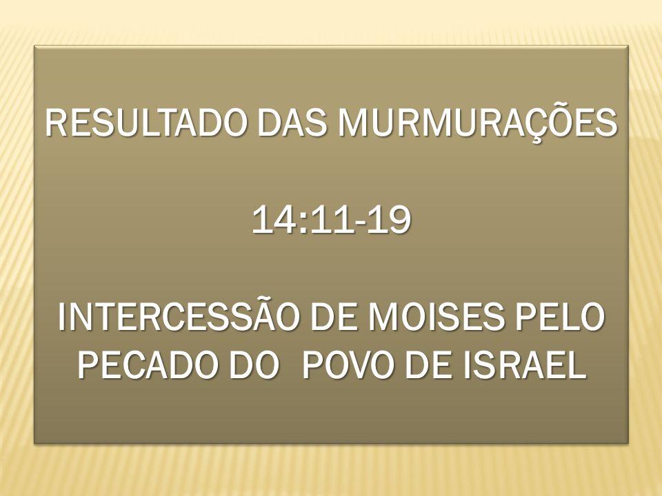 RESULTADO DAS MURMURAÇÕES 14:11-19