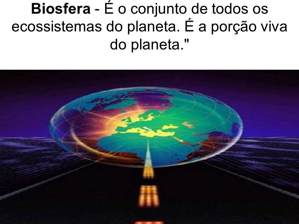 Biosfera - É o conjunto de todos os ecossistemas do planeta