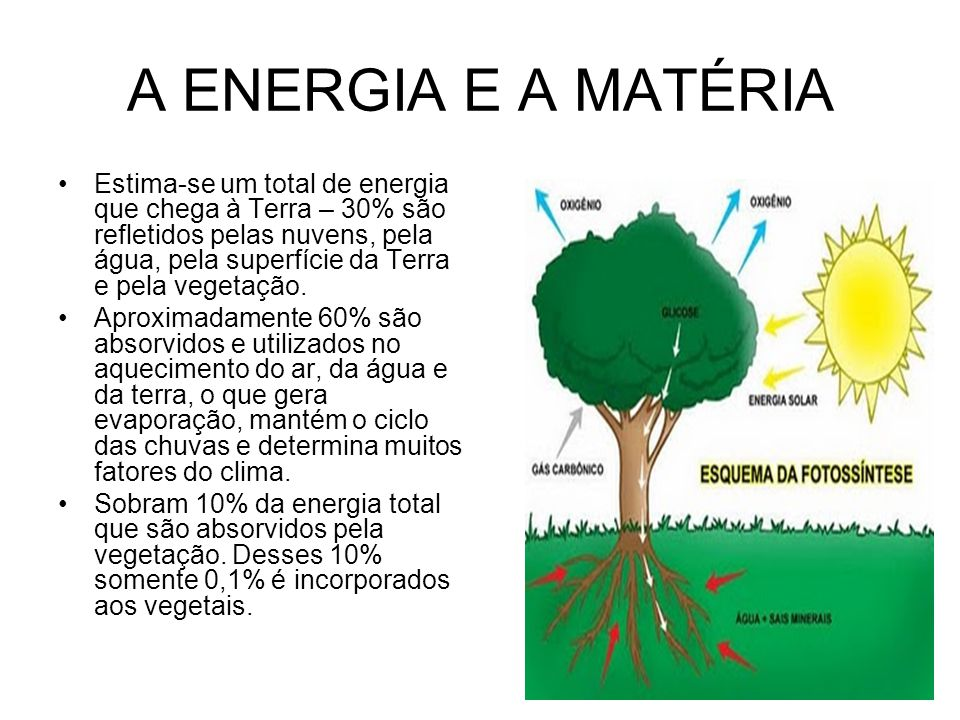 A ENERGIA E A MATÉRIA