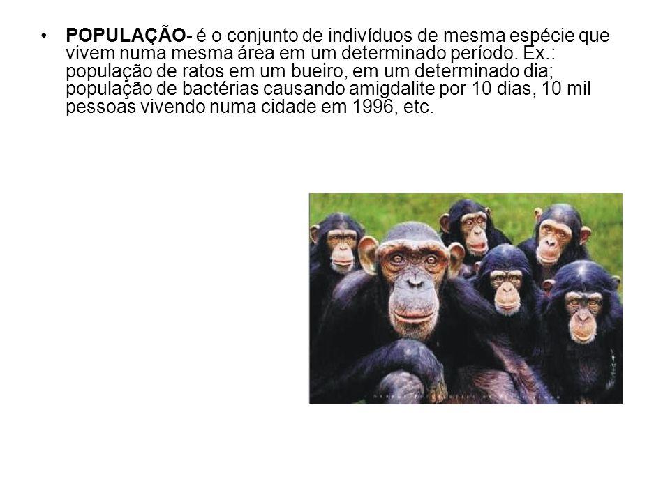 POPULAÇÃO- é o conjunto de indivíduos de mesma espécie que vivem numa mesma área em um determinado período.