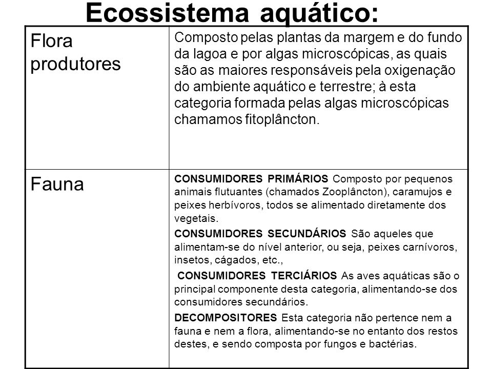 Ecossistema aquático: