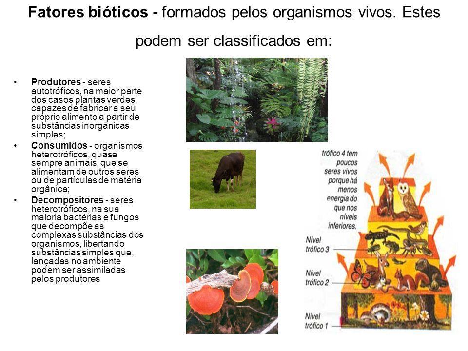 Fatores bióticos - formados pelos organismos vivos