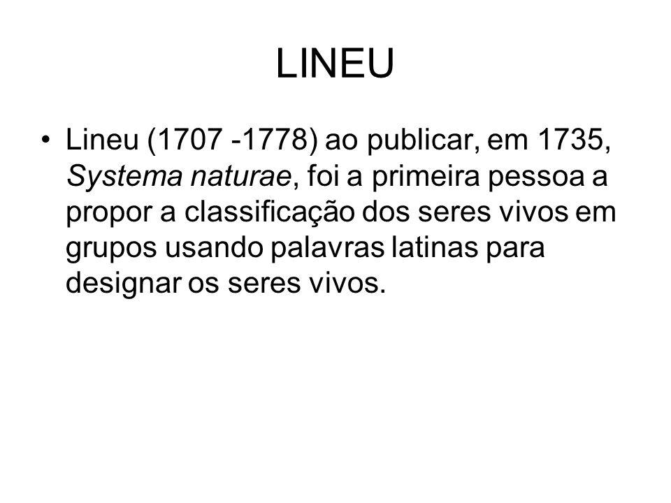 LINEU