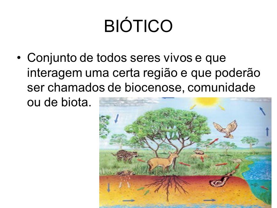 BIÓTICO Conjunto de todos seres vivos e que interagem uma certa região e que poderão ser chamados de biocenose, comunidade ou de biota.