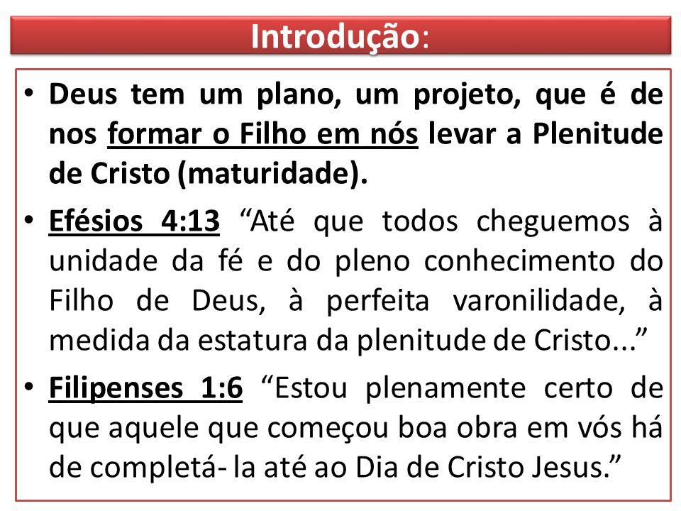 Introdução: Deus tem um plano, um projeto, que é de nos formar o Filho em nós levar a Plenitude de Cristo (maturidade).
