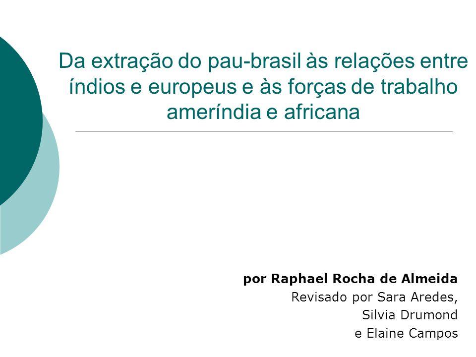 Da extração do pau-brasil às relações entre índios e europeus e às forças de trabalho ameríndia e africana