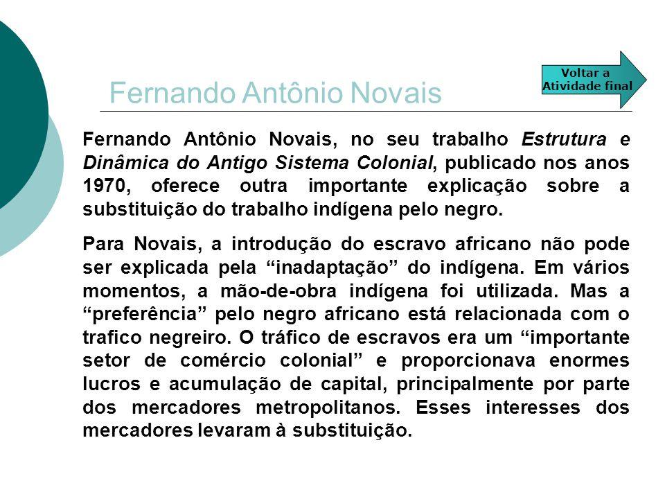 Fernando Antônio Novais