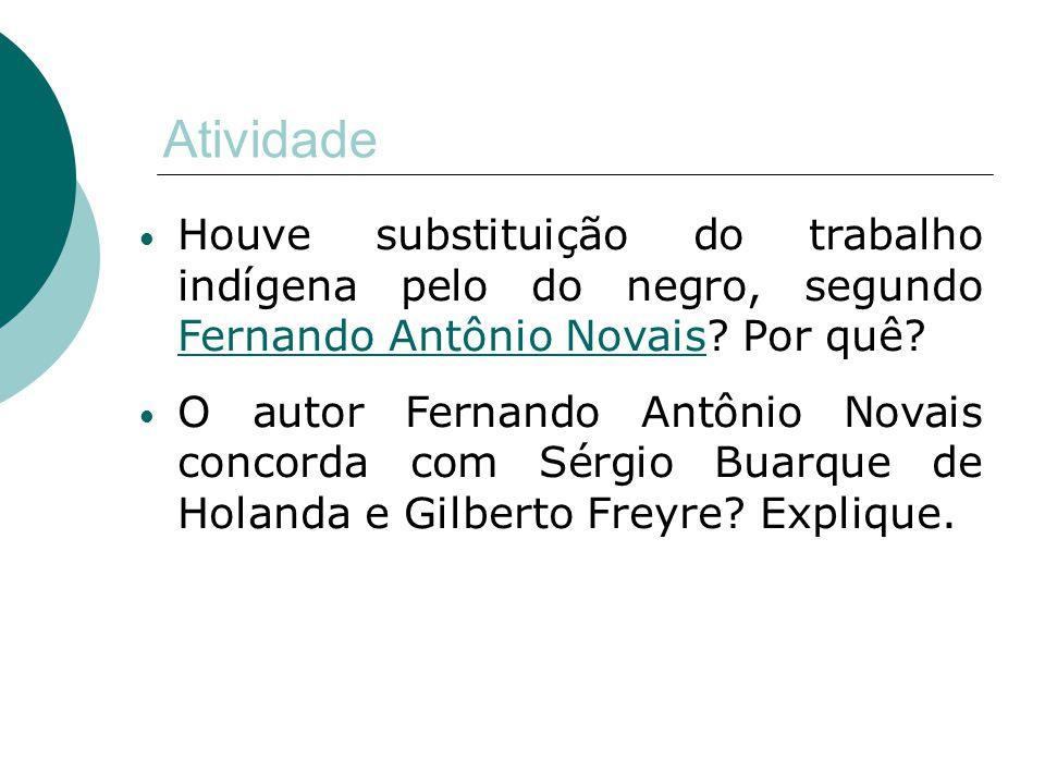 Atividade Houve substituição do trabalho indígena pelo do negro, segundo Fernando Antônio Novais Por quê
