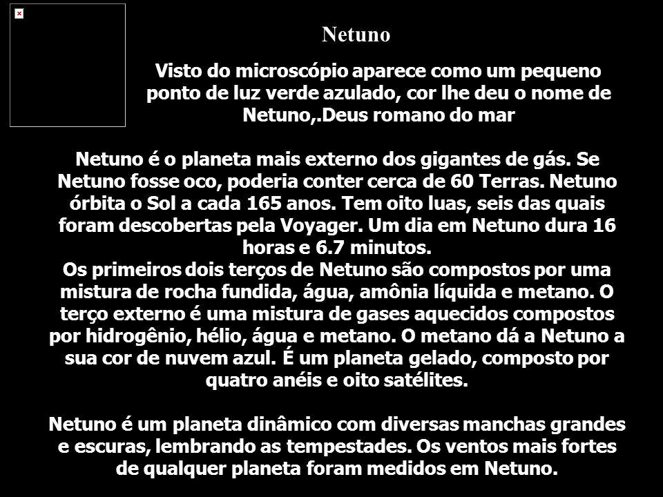 Netuno Visto do microscópio aparece como um pequeno ponto de luz verde azulado, cor lhe deu o nome de Netuno,.Deus romano do mar.