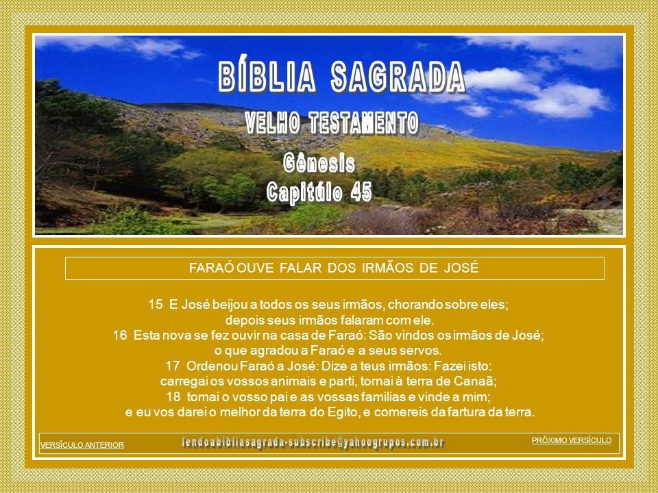 BÍBLIA SAGRADA Gênesis Capitúlo 45 VELHO TESTAMENTO