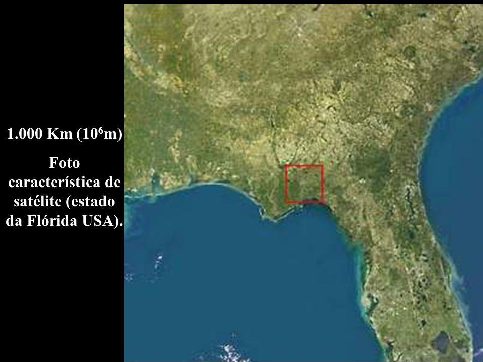 Foto característica de satélite (estado da Flórida USA).