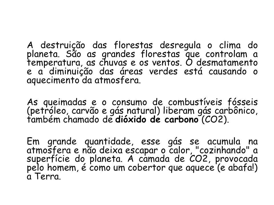 A destruição das florestas desregula o clima do planeta