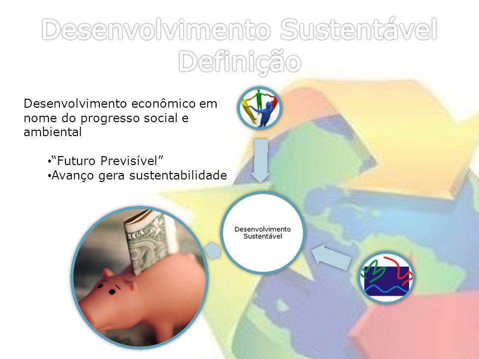 Desenvolvimento Sustentável Definição